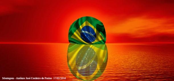 W Dog Brasil bandeira do bra...