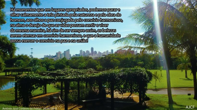 TELA PINTADA PELA NATUREZA E PELO HOMEM